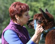 Create Your Sacred Space for Animal Communication